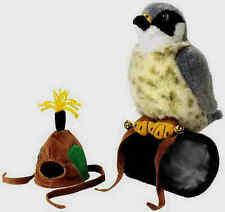 Wanderfalke Falke Peregrine Falcon Faucon Haube Greifvogel 79885