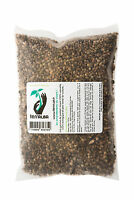Graines de chanvre Bio  250g TERRALBA à faire germer enzymes croissance seed