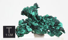 STUNNING Malachite Fibrous Crystal Cluster COPPER Mineral Specimen CONGO AFRICA