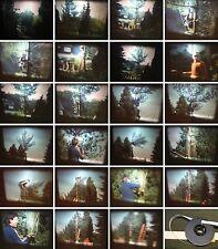 Super 8mm Film-Privatfilm von 1982-Mutige Baumfällarbeiten von Privatpersonen