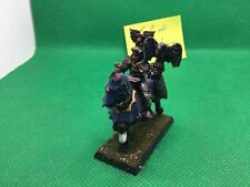 Pro Painted Warhammer Fantasy Empire Elector Count of Hochland