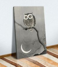 COOL OWL CANVAS WALL ART PICTURE PRINT ARTWORK KIDS BEDROOM JAPANESE