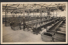 Australia Postcard - Machinery at Geelong Mills   DR709