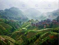 PHOTO LANDSCAPE RURAL CHINESE PADDY TERRACES FARMING ART PRINT POSTER MP3625B
