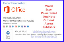 Ms Office Pro Plus Professinal Plus 2013 for 1 Pc life time