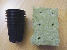 "(6) Hydroponics 2"" Net pot and Grodan 1"" Rockwool Cubes - Free Shipping"