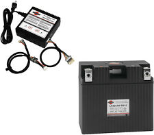 """Lithium Battery w/ BMS Charger - 12V 315CCA Left """"+"""" Terminal"""