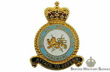 Queens Crown: Royal Air Force Tangmere Airport Station Unit RAF Lapel Badge