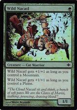 Wild Nacatl *FOIL Common* Magic MtG x1 Shards of Alara SP