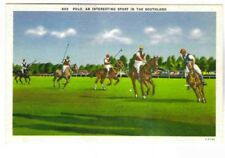 Polo, An Interesting Sport In The Southland Postcard Circa 1935-45 Horses,Polo