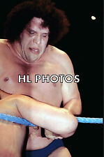4x6  WRESTLING PHOTO   ANDRE THE GIANT   A2041     wwe   tna