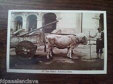 Euskadi Postal TARJETA CASERO BUEYES CARRO ANTIGUO Historica Roisín fotógrafo