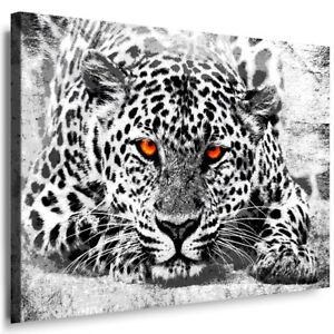 Leopard Raubtiere Tiere Abstraktes Bilder Leinwand Deko Wandbild XXXL 2808A