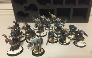 Warmachine Hordes Everblight Blighted Nyss Ogrun and Raptors painted w storage