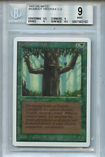 MTG Unlimited Ironroot Treefolk BGS 9.0 (9) Mint Magic Card WOTC 3182