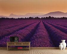 Large bedroom & living room paper wallpaper 232x315cm Lavender Fields in France