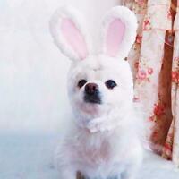 Cat Bunny Cute Rabbit Ears Hat Cap Pet Cosplay Costumes Dogs Small O9N4 E7R2