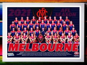 ✺Framed✺ 2021 MELBOURNE DEMONS AFL Premiers Poster - 45cm x 32cm x 3cm