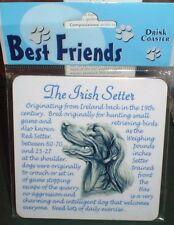 Lovely Irish Setter Coaster