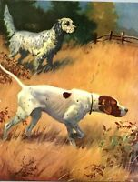 English Setter and Pointer Dog Hunting Field Wesley Dennis Book plate print