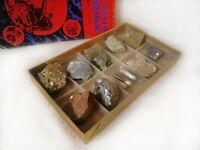 Rocks Mineral Educational Kit Samples Display Set Specimen Rough Stones Geology