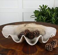 "LARGE 23"" NATURAL LOOKING CLAM SHELL BOWL ORNATE ART BEACH OCEAN TABLE DECOR"