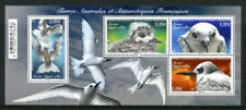 """French Antarctic TAAF - """"BIRDS ~ STERNE GYGIS ALBA ~ WHITE TERN"""" MS 2017 !"""
