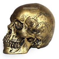 Realistic 1:1 life size Human Skull Model Medical Skeleton Antique Bronze Decor
