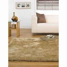 Polyester Solid Pattern Contemporary Rugs