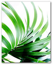 Palm Leaf Print, Tropical Palm Leaf Print, Palm Art, 8 x 10 inches, Unframed