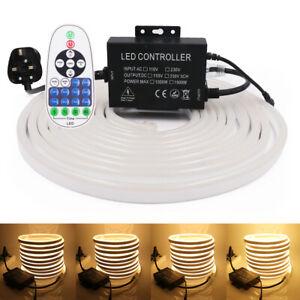 220V LED Strip RGB Neon Flex Lights Waterproof Outdoor Lighting + Remote Control