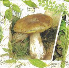 2 Serviettes en papier Champignon Decoupage Paper Napkins Mushroom