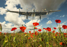 More details for avro lancaster  over poppy fields canvas print various sizes free delivery
