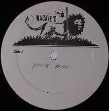 "WAYNE JARRETT, AUGUSTOS PABLO: Youth Man WACKIE'S Roots Reggae Blank 12"" Hear"