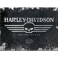 Targa in Latta Vintage Harley-Davidson Skull Logo 30 x 40 in metallo stampato