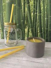 Citronella Candles Concrete Cement Pot industrial Garden Bugs Repellent Patio