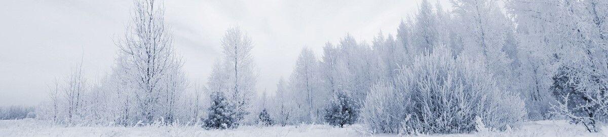 Snow Central