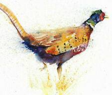 Limited Edition Print of PHEASANT original watercolour by HELEN APRIL ROSE   337