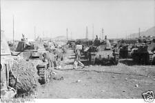 "Italian Army Tanks M1441 Assault Guns Semovente World War 2 Reprint Photo 6x4"""
