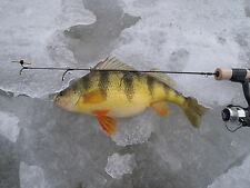 "St Croix Legend Style Custom Ice Rod  24"" Med. Action"