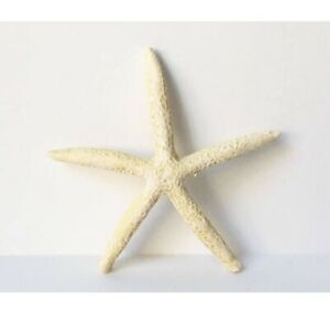 Set of 4 Resin Starfish Decorative Accent Decor Beachy Natural Cruelty Free