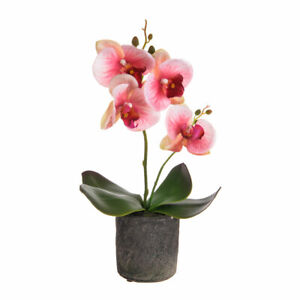 Small Artificial Orchid Plant in Pot - Real Touch Flowers