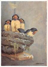 "vintage blank greeting cards  ARS SACRA Schönermark ""young birds ""1390"""
