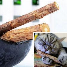 Katzensticks Katzenminze Zahngesundheit Katzenspielzeug Gesund Kaustock