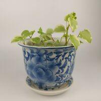 VTG Large Hand-Painted Chinese Blue White Porcelain Jardiniere Planter Peony