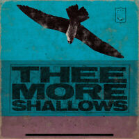 Thee More Shallows – Book Of Bad Breaks Vinyl LP