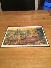 Sonoran Desert - USA Postal Stamps