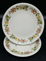 """2 Wedgwood QUINCE Dinner Plates 10 1/2""""  EXCELLENT CONDITION-Multiples Available"""