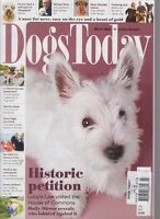 Dogs Today July 2018 Historic Petition Lucy's Law