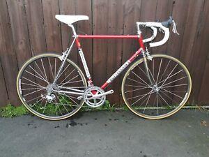 Bottecchia Road Bike. Vintage. Campagnolo